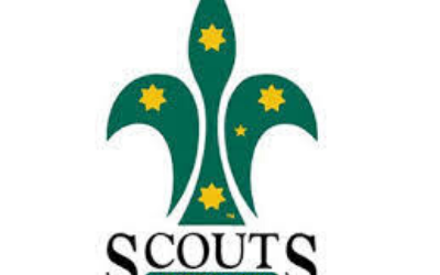 Mansfield Scouts